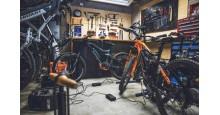 Tarya e-Bikes