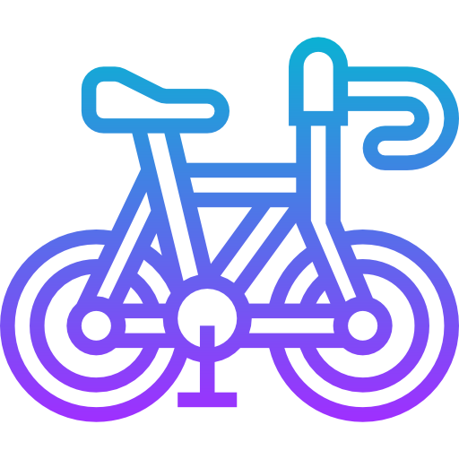 Alquiler bicicletas Carretera